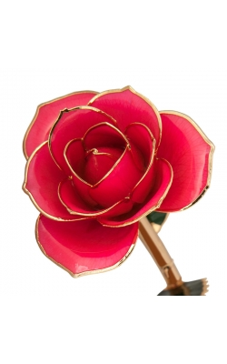 Pretty In Pink 24K Gold Dipped Rose product image