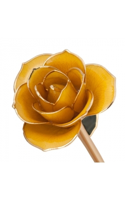 Sunshine Yellow 24K Gold Dipped Rose product image
