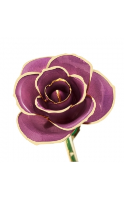Lovely Lavender 24K Gold Dipped Rose product image