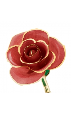 Evening Coral 24K Gold Dipped Rose product image