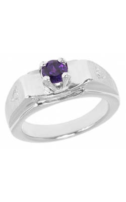 February (Amethyst) Mini Memory Ring Charm (Boy/White Gold) product image